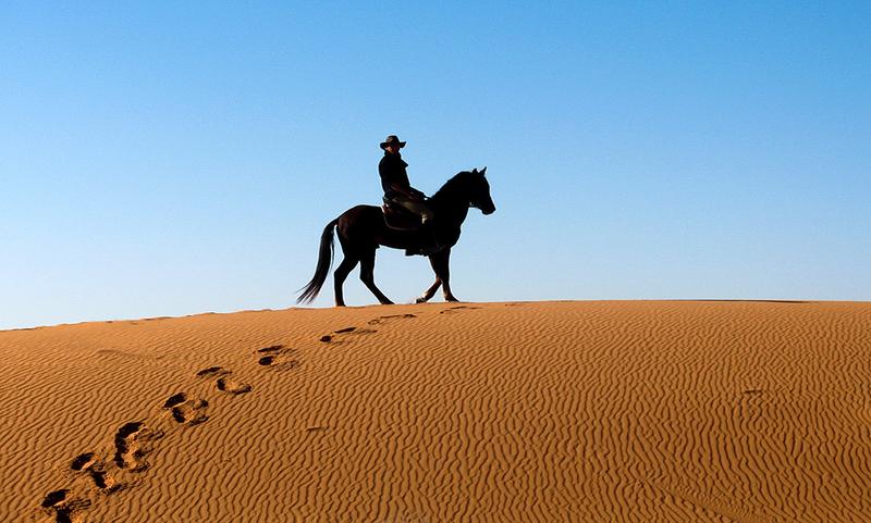 Desert Horse Ride