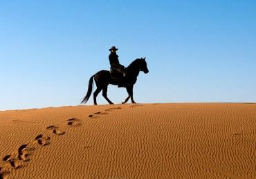 Desert Horse Ride of Rajasthan