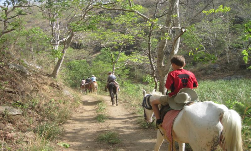 Himalaya Horse Safari