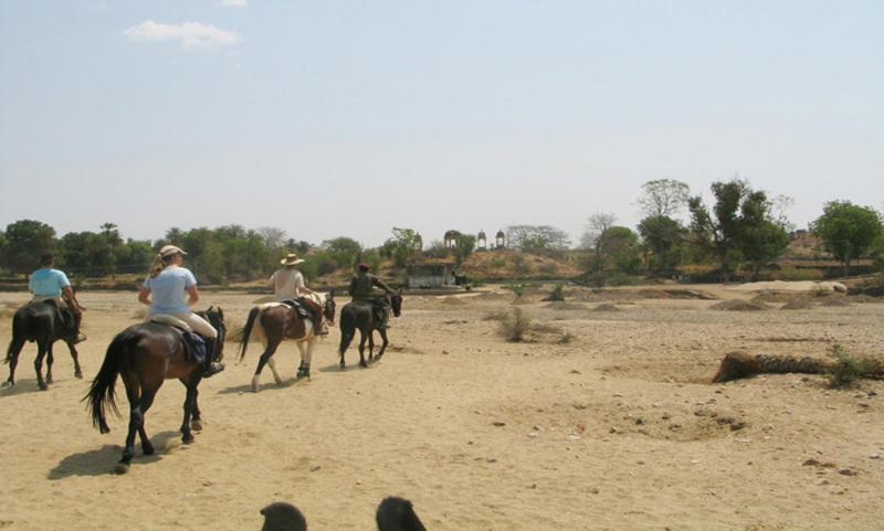 pushkar horse safari