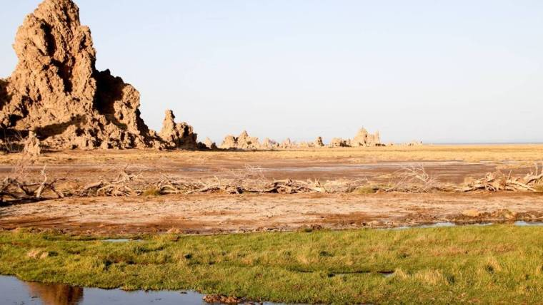 Djibouti's Footsteps of the Afar