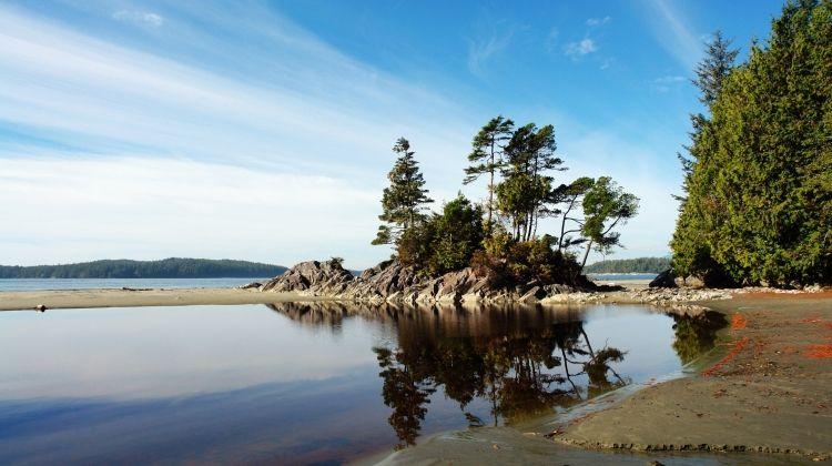 Whales & Bears of British Columbia