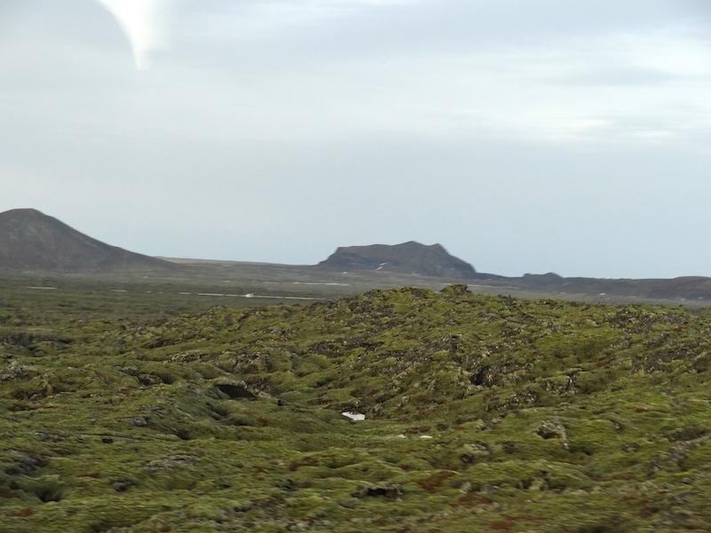24 Hours in Reykjavik Moss Scenery