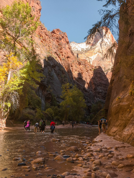 Hiking The Narrows Trail at Zion National Park