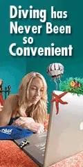 elaerning convenient