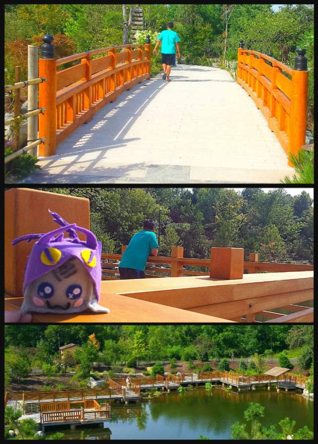 Japanese Gardens Yatsuhashi Zig Zag Bridge Meijer Gardens Adventure Dragon