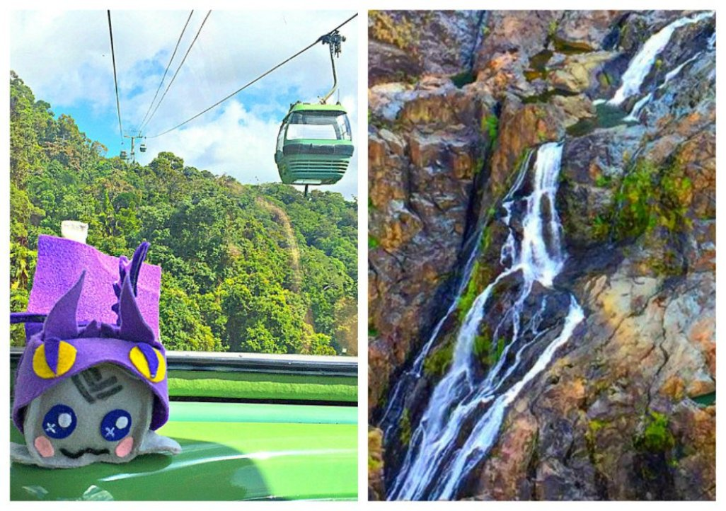 things to do in Kuranda Village in a Rainforest