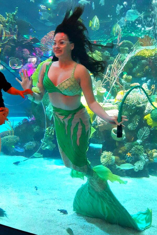 Free Mermaid Show in Las Vegas at the Silverton Hotel and Casino Aquarium
