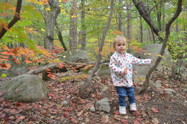 We found Fall! Exactly what we came here for!