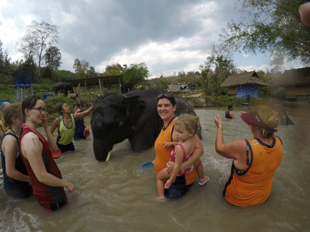 Bathing and swimming with the elephants