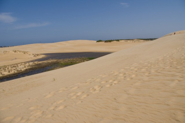 Jockey's Ridge State Park, Outer Banks, North Carolina