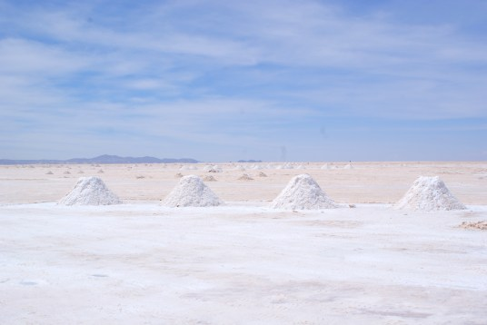 Piles of harvested salt waiting to be collected.
