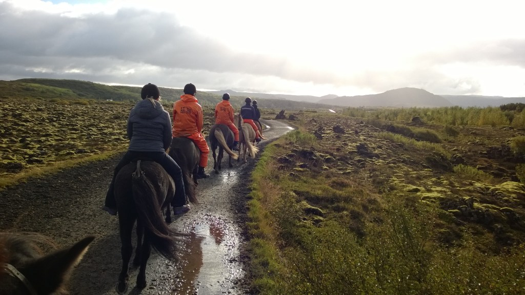 Riding Icelandic Horses in Iceland.