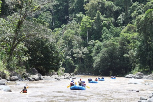 The Pacuare River. Picture courtesy of Exploradores.