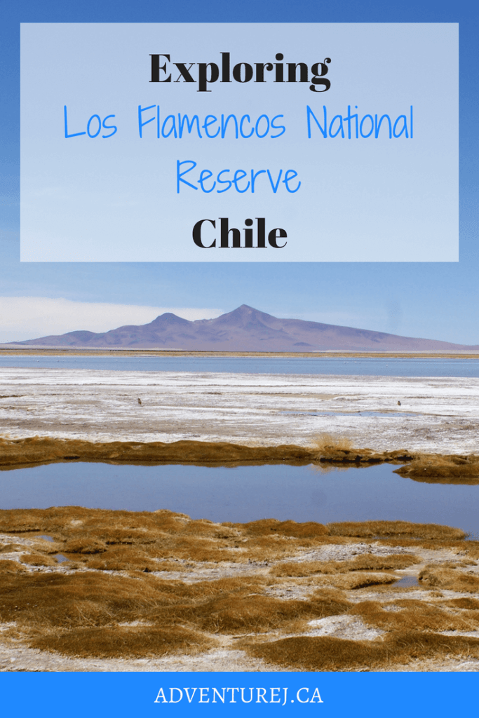 The landscape in this reserve, just outside of San Pedro de Atacama, Chile, is one of the most beautiful places I've explored. Here are the sites not to be missed! #Chile #wanderlust #travel #traveltips #landscape #hike #explore #adventure #outdoors #nationalpark