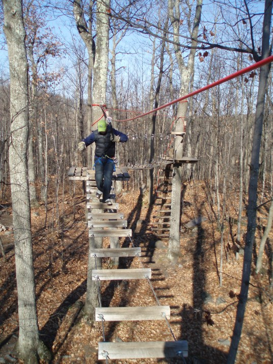 Traversing the high aerial park.