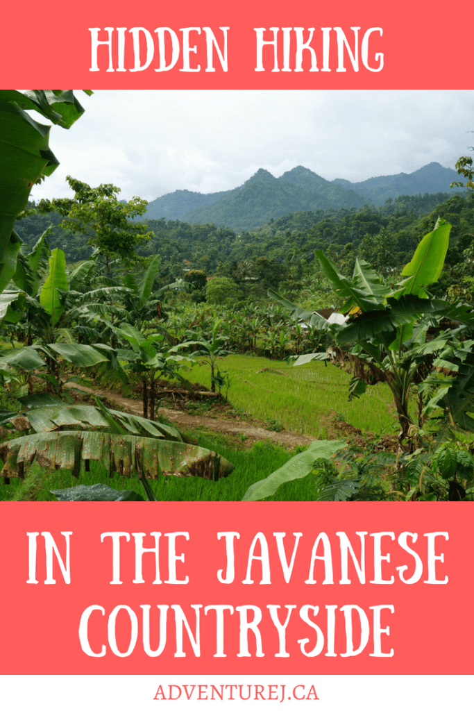 Hiking in the stunning Javanese countryside, just outside of Jakarta, turned out to be one of my most memorable experiences in Indonesia!  #Indonesia #hiking #Java #country #countryside #travel #traveltips #outdoors