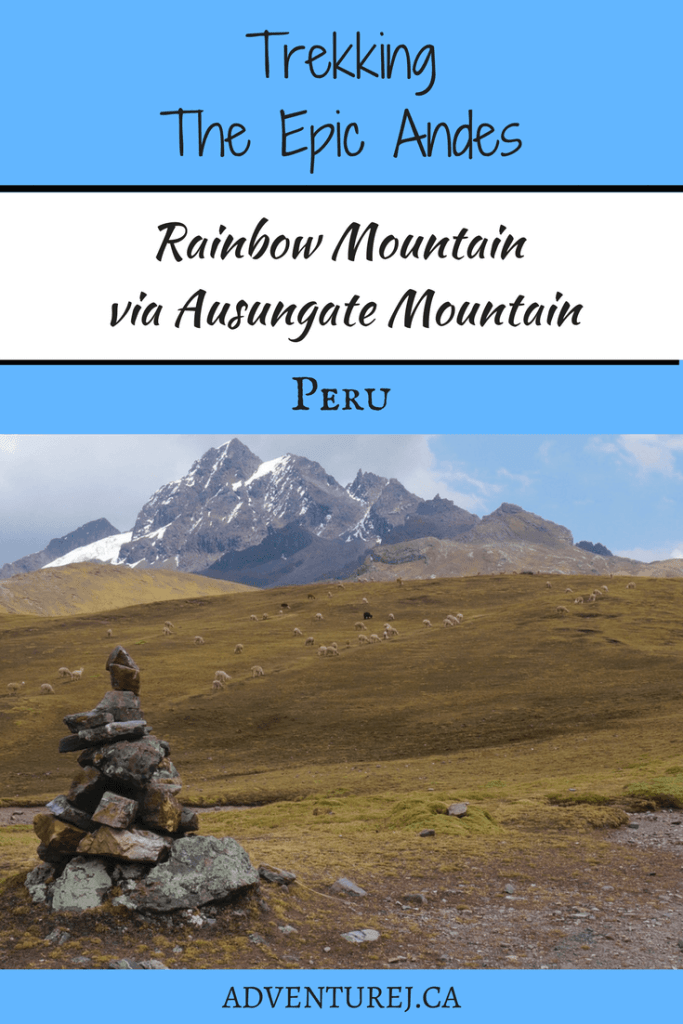 If you're planning on visiting Peru, I highly recommend setting a few days aside to trek in the incredible Andes Mountains. Hiking through alpaca pastures to the base of the stunning mountains, you won't be disappointed! #Peru #southamerica #trekking #hiking #hike #andes #mountains #mountain