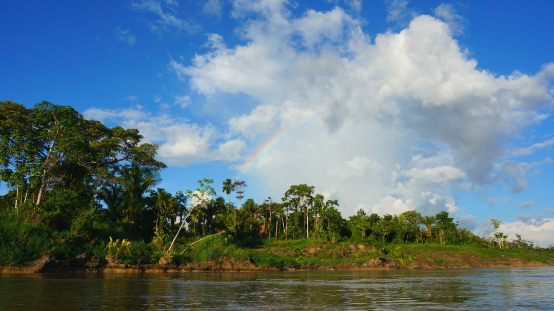 Top 12 Experiences To Have In The Peruvian Amazon