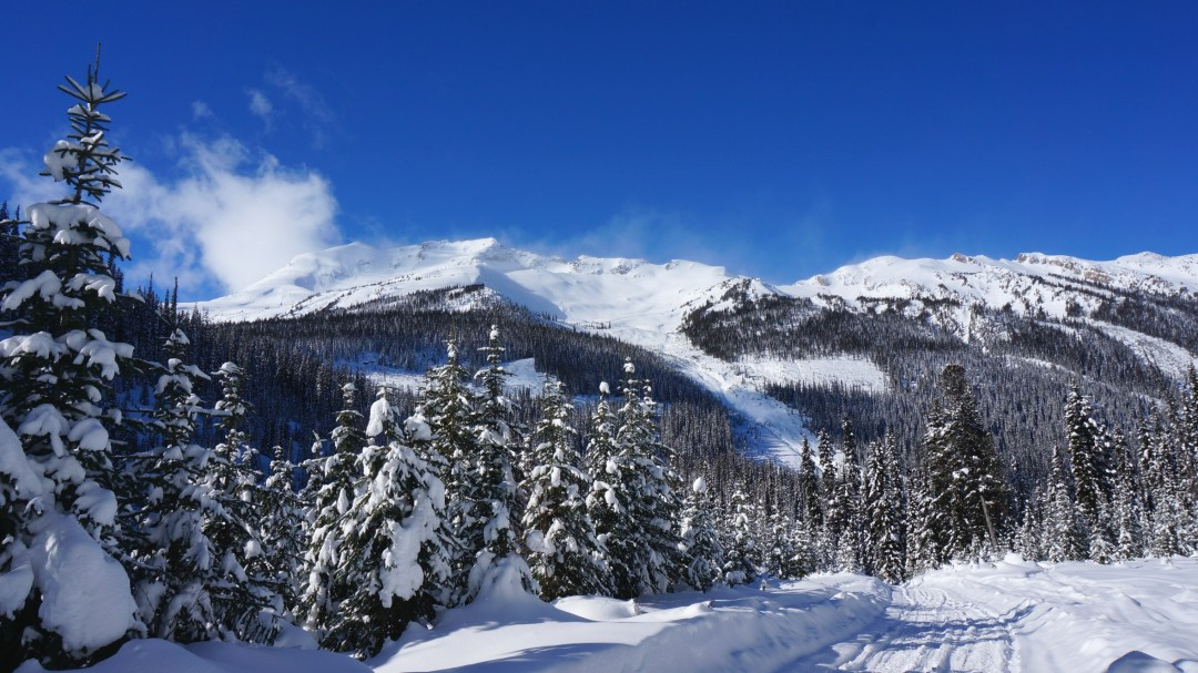 The beautiful mountain scenery in the backcountry.