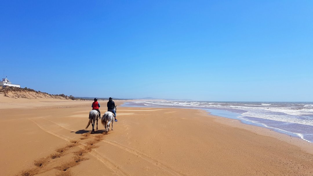 Horseback riding on a beach in Morocco.