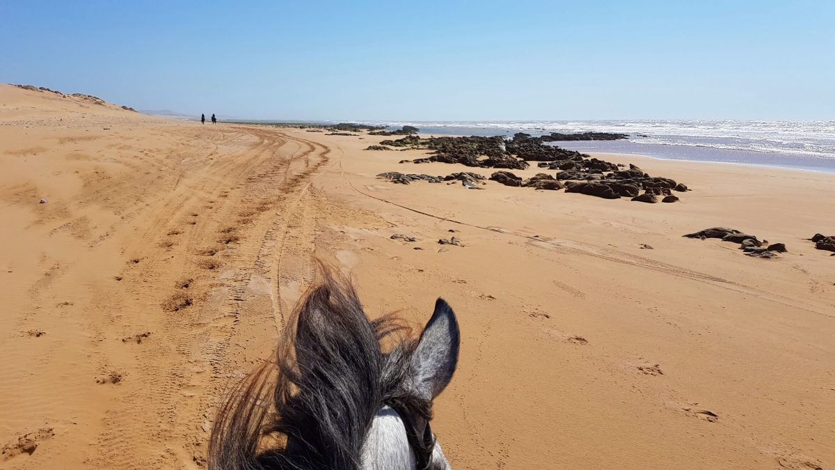 Arabian Days: Horseback Riding In Morocco