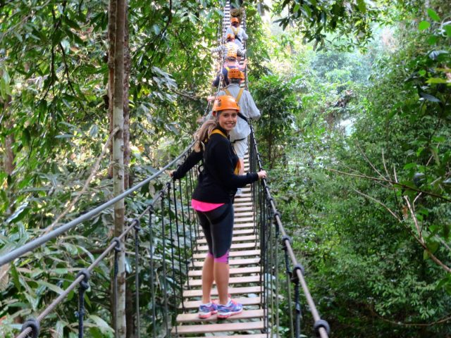 flight of the gibbons ziplining chiang mai