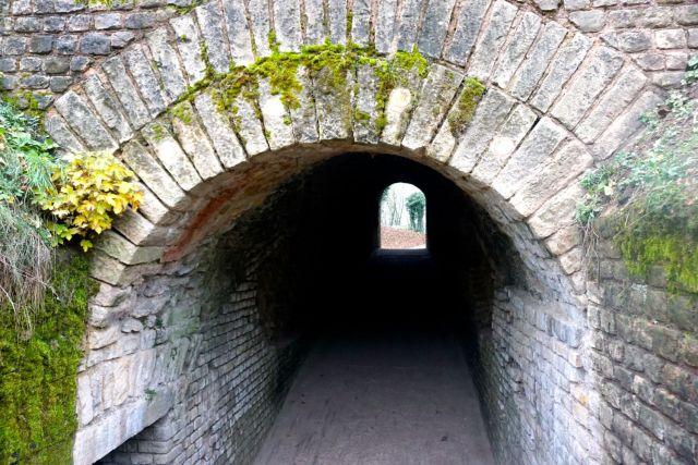a day in trier roman amphitheatre
