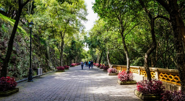 is mexico city worth visiting what to do in mexico city