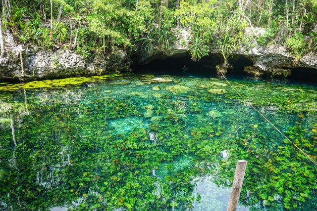 what to do in tulum mexico