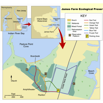 James Farm Ecological Preserve (Bethany Beach Vacation)