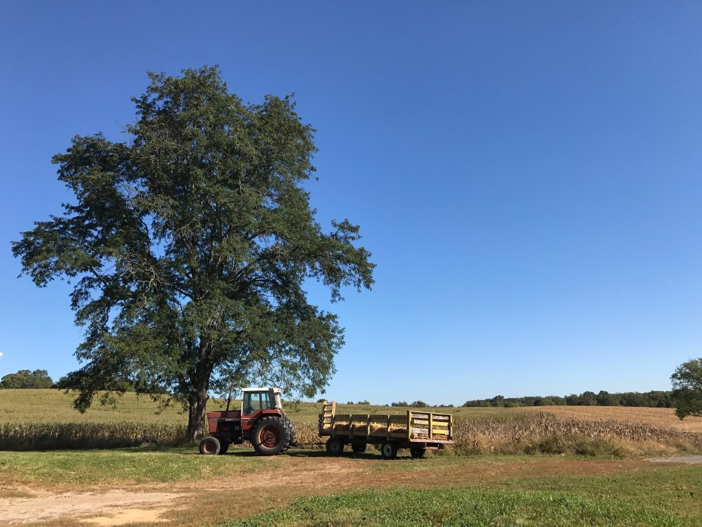 tractor under a tree