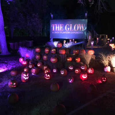 Light Up Your Halloween with The GLOW