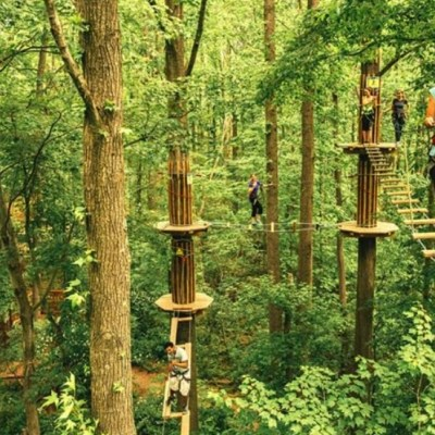 Tree Top Adventures at Go Ape Rockville