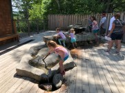 Squam Lakes Natural Science Center - Exploring Water
