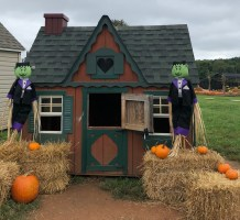 Decorated play houses