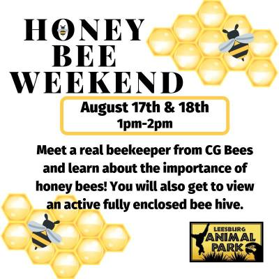 Honey Bee Weekend at Leesburg Animal Park