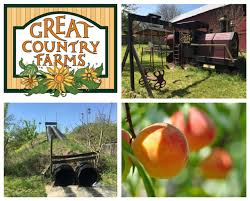 Apple Gala & Fresh Cider Fest at Great Country Farms
