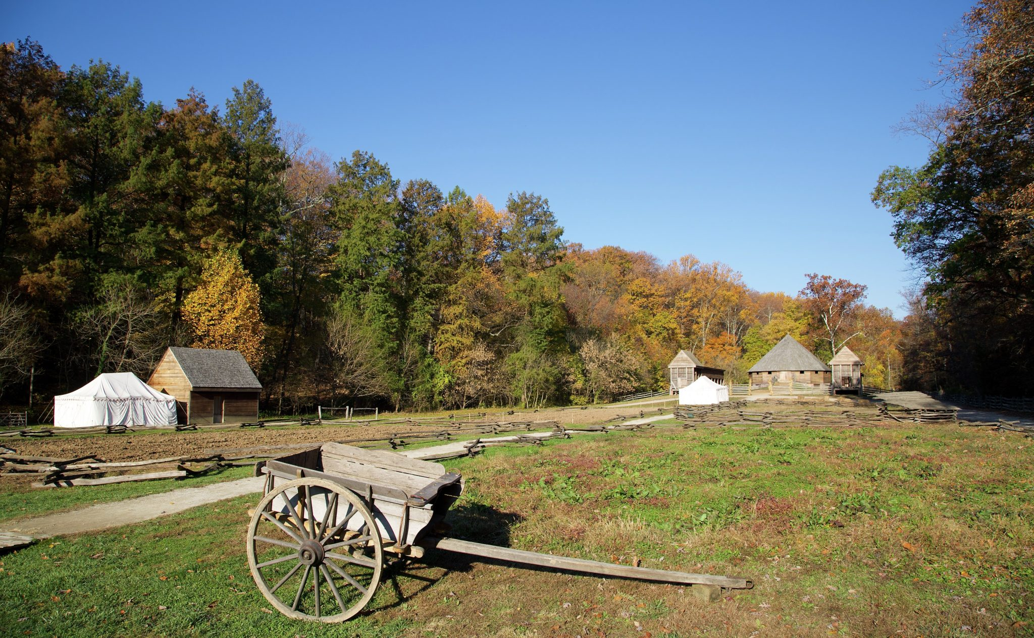 mount vernon farm