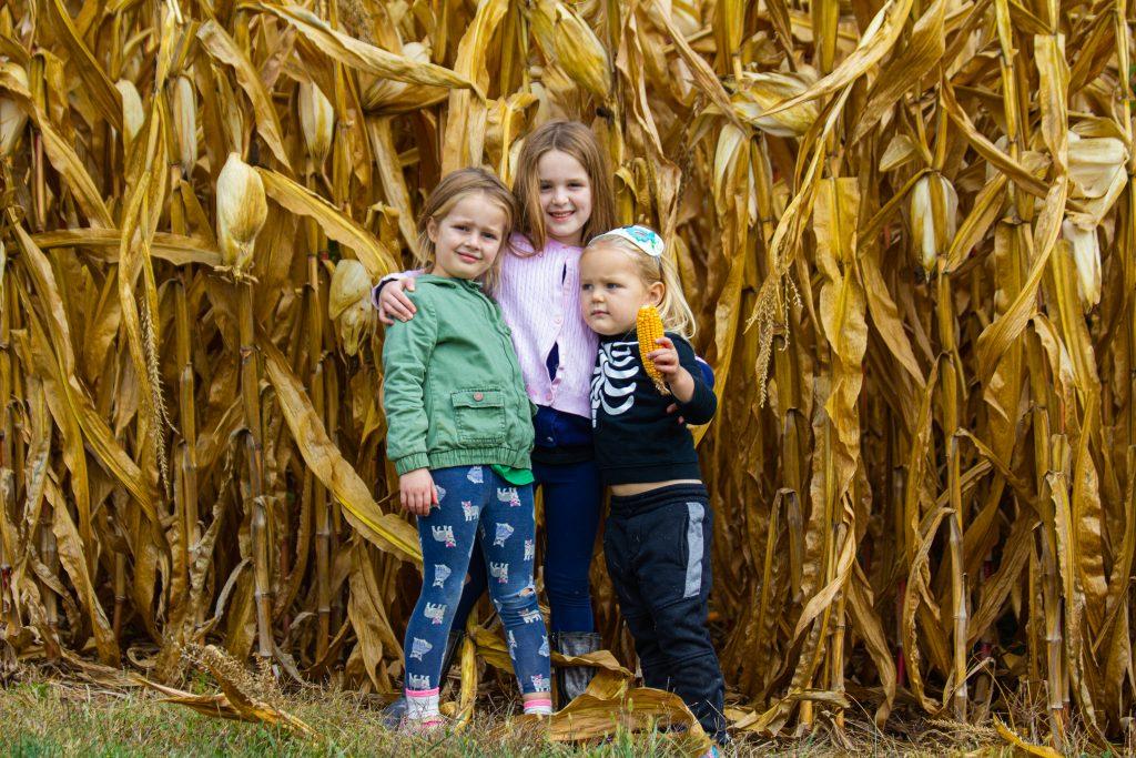 girls in corn field