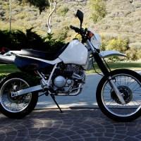 Cool Honda XR650L images