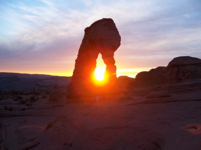 Delicate but Strong - Arches National Park
