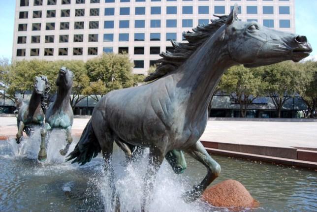Mustangs at Las Colinas - Dallas