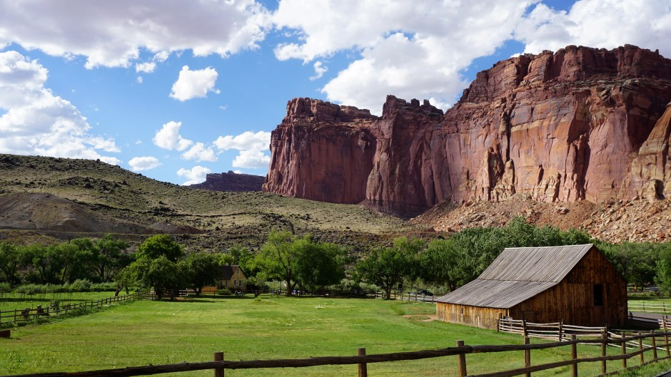 8 Aug 2015 Capitol Reef National Park (108) copy