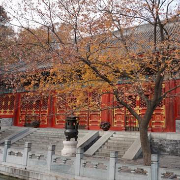 Fragrant Hills Park – Xiangshan