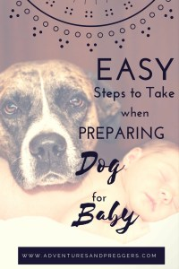 easy steps to prepare dog for baby
