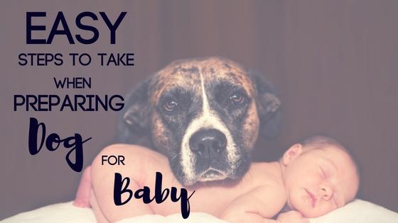 Easy Steps to Take when Preparing Dog for Baby
