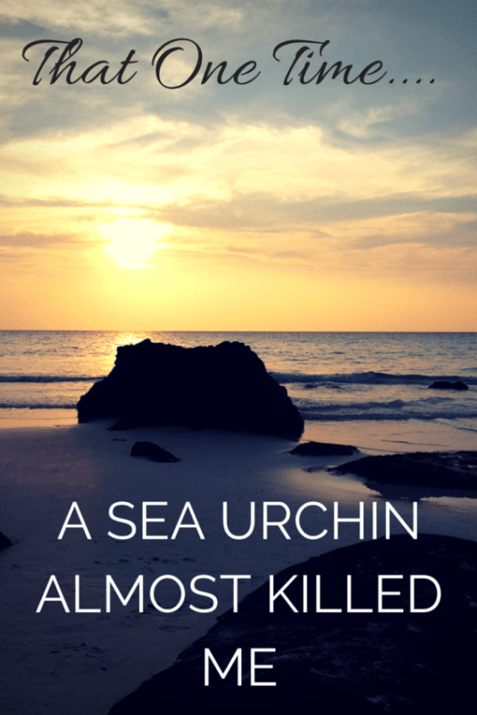 That One Time A Sea Urchin Almost Killed Me in Cambodia