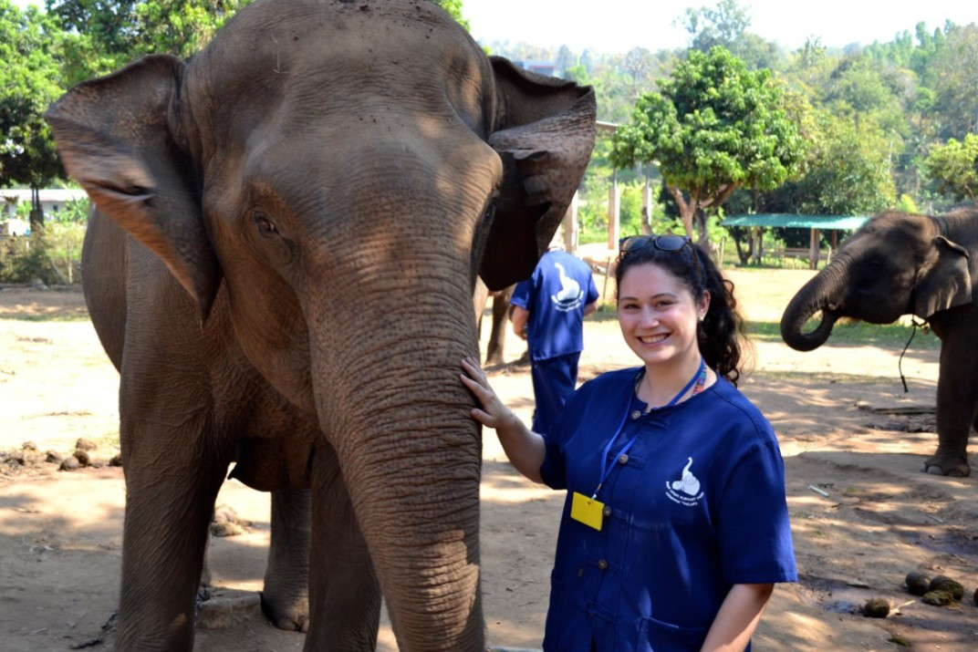 Baanchang Elephant Park Review