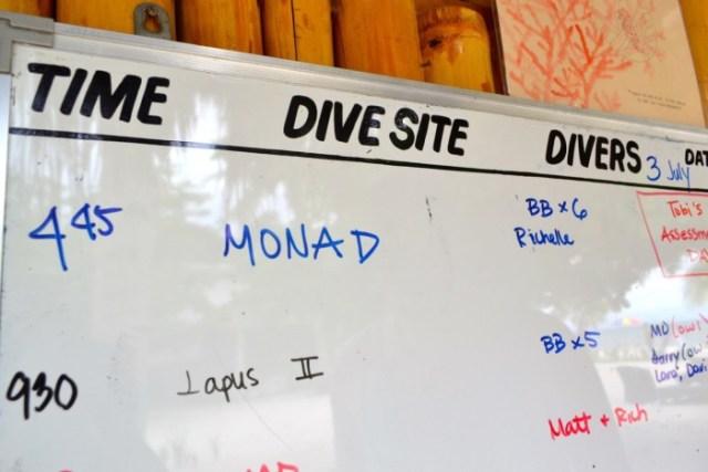 evolution dive board